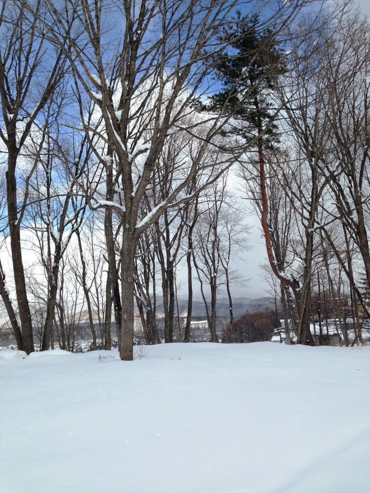 Photo 2013-12-22 12 48 31