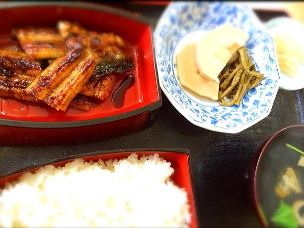旅の空の下から -高知編 Vol.5-愛媛県松野町「末廣」で四万十川の天然うなぎを食べる