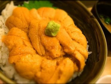 札幌  二種  うに丼比較 結局どっちも美味しい!