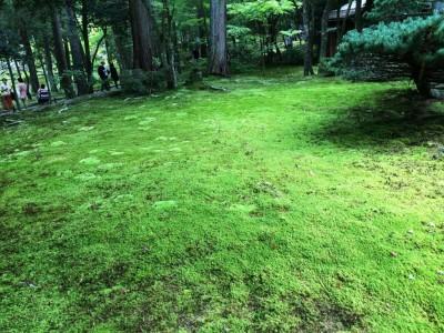 宿坊へ泊まろう! 京都への旅 Vol.10 京都 苔寺 西芳寺 写経体験ができるお寺