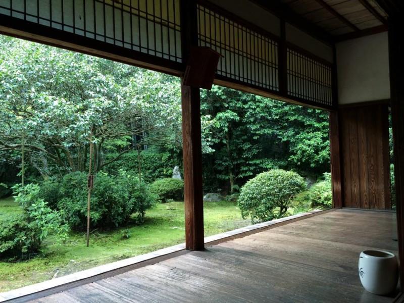 宿坊へ泊まろう! 京都への旅 Vol.11 京都 地蔵院でお茶を楽しむ