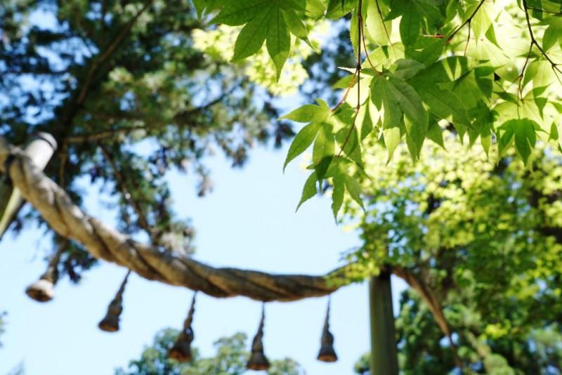 奈良 信貴山断食道場 今度は9日間だよ!-8日目-日本最古の神社 三輪神明 大神神社へ行く